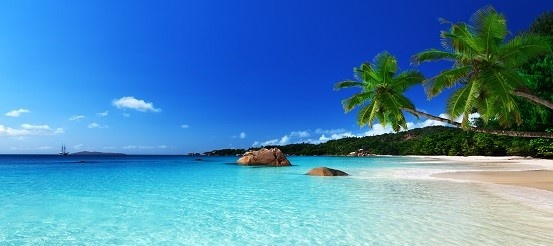 paradise_beach_553